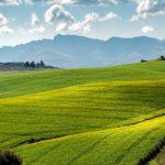 農地転用~多くの皆様のご協力あっての申請なのです~